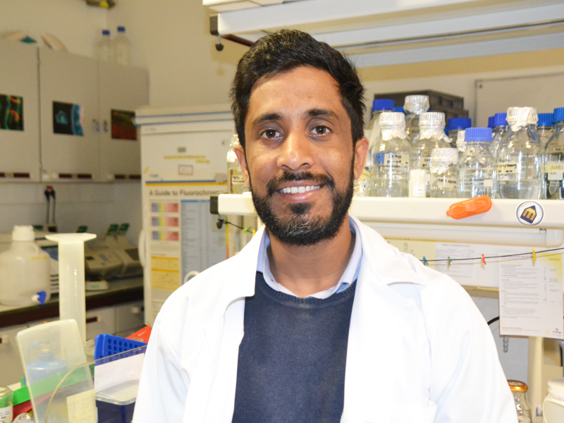 CBMR researcher receives a grant from the Federation of European Biochemical Society