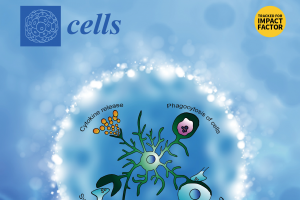 CBMR researcher invited to join Cells Editorial Board