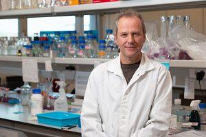 """CBMR researcher publishes """"FOXO – Transcription Factors"""""""